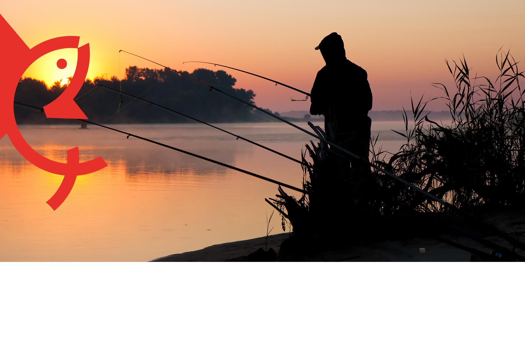 Lees meer over het artikel Aparte Nachtvisvergunning VVM